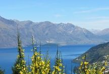 New Zealand / This board is dedicated to all pins related to New Zealand Travel .