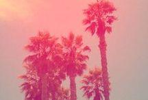 Gorgeous photos