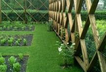 Jardin / garden inspiration