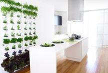 Vertical Garden / love the idea of having a vertical garden someday