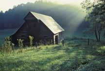 Barns / Love Barns. Raised on a farm. / by Julie Van Fosson-Robinson