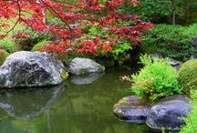 Jardín Japones / by Eliana V. Vega ♥.•:*´¨`*:•♥