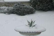 La beauté de l'hiver.