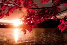 Fall/Autumn Scenes / As weather turns cool.. / by Phil