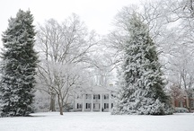 Snow Days / by Davidson College