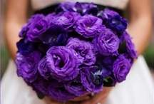 Catch the Bouquet- Floral Inspiration / Repinned from Users on Pinterest!