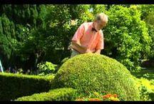 garden videos / .