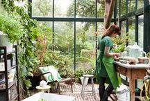 Potting shed - Nurseries / .