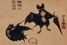 Fox (Fruit) Bat / Bat