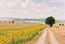 Tuscany / .