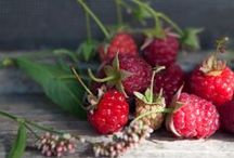 berries / .