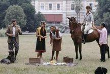 Equestrian Estate