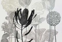 printmaking / montypes, one of a kind prints, printing without a press, gelli printing