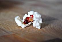 Food: Pop! Pop! Popcorn! / by Christine Ulbrich