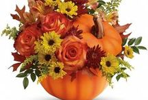 Fall flowers in warm shades