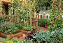 Saladin Farm and Gardens / My magical 20 acres. Vegetables, Marijuana, herbs, fairies, hobbits, elves, magic. My dream in progress. / by Kimberly Saladin