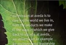 All thing Aveda / Product and how to styling tips and tricks