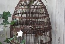 Antique birds cages