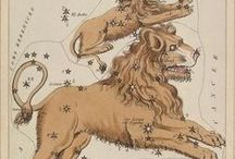 Astrology and Stuff / by allison turner