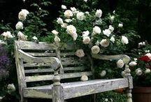 Garden seats and swings