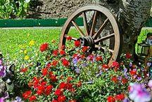 Wheels in the Garden / Wagon wheels in the garden amongst flowers and foliage or as garden art
