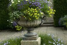 Container Planting Ideas / Colourful containers - good plant combinations