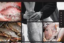 Fish Merchand & Restaurant