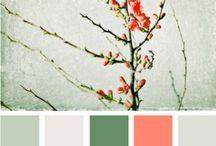 ..colour tale