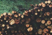 ..wood