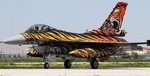 Tiger meet / The flying tigers