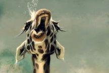 Giraffes. / I'm obsessed.