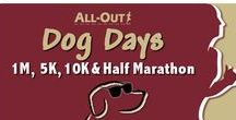 All-Out Dog Days / Get ready for some fun in the sun and a great mid-season test of your training as All-Out bring you Dog Days! Centrally located between Denver & Boulder just a mile off US 36 at Westminster's award-winning City Park, along with its Endless Series sidekick in December… Fa La La, the beauty of our breathtaking Flatirons as a backdrop will inspire you every step of these 1M, 5K, 10K & Half Marathon courses along Big Dry Creek Trail… well known as a Colorado favorite!