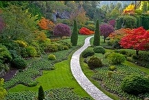 Around the World / gardens around the world