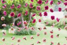 Fresh garden / Jardinería de ensueño