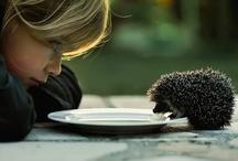 tenderness & love