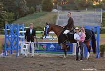 Fenwick Equestrian / Fenwick Equestrian manufactures therapeutic equine clothing using high performance fabrics.  We dress champions around the world!  www.fenwickequestrian.com