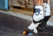 Leg Boots / Fenwick's high performance Leg Boots have a protective yet flexible outer shell with either a memory foam or breathable neoprene lining that conforms to your horse's leg for comfort and protection.