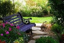 shabby chic gardens patio / by karen ziegler