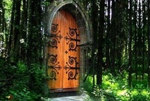 Forest Portals / Enchanted doors leading to magical forest realms.