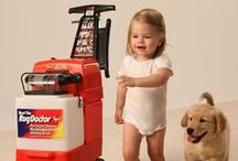 Tips of the Trade / Interesting facts about Rug Doctor, carpets, and carpet cleaning.
