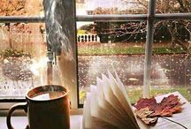 Out My Window / Misty rainy days, warm and cozy inside with loved ones, or just enjoying the peacefulness of reading a book by the fire and listening to the beautiful rain. Please follow me :0)