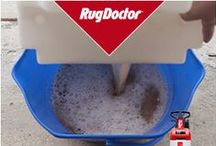 Stay Clean 2016 / Learn how to Stay Clean with Rug Doctor.