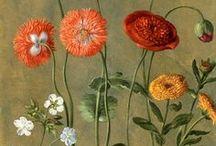 Botanical poetry