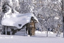 Snow, Chalets and Winter Living / by Nikki Williams