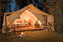 Camping and Glamping / by Nikki Williams