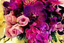 Fresh Flowers / Flowers makes me happy!