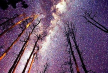 Universe / by Janez Mlakar