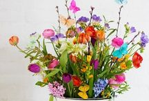 Fabulous Flowers / by Jenna Williams-Bader