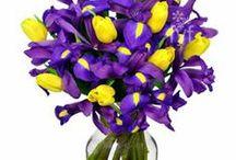 Joyful Gifts by Julie Flowers / Gifts of Fresh Flowers / by Joyful Gifts by Julie