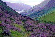 'Scotland / Scotland
